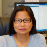 Xin Dang, Ph.D.